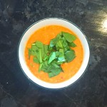 Coconut and Red Curry Lentil Soup